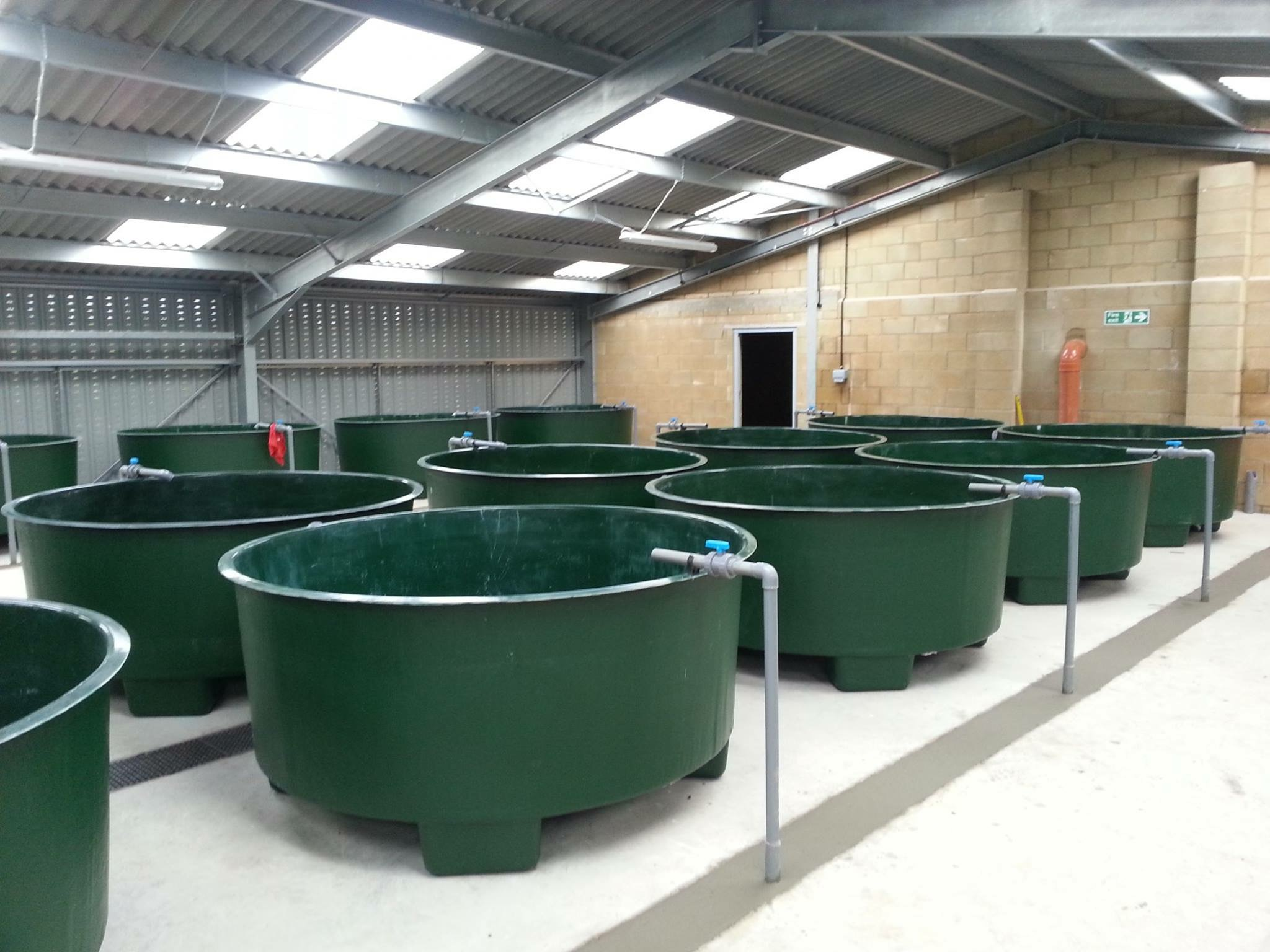 GRP Moulded Tanks